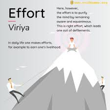 """""""Strive on, untiringly"""": Right Effort and Balanced Practice"""